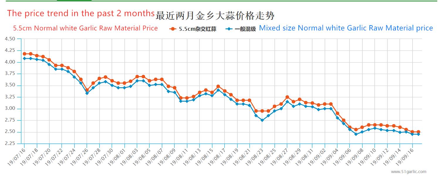 Tendencia del precio del ajo en los últimos 2 meses